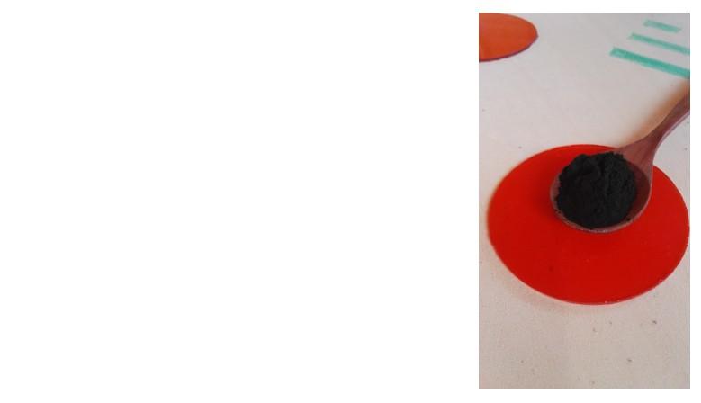 Spirulina Biologica 150gr
